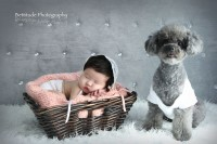 Hong Kong Best Newborn Baby Maternity Photographer_238pi8