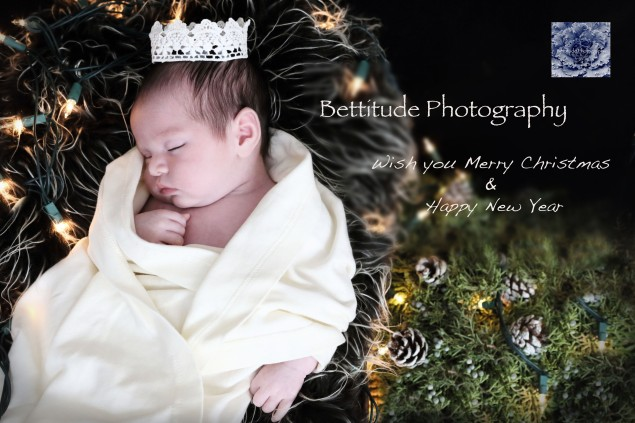 Seasonal Greetings from Bettitude Photography